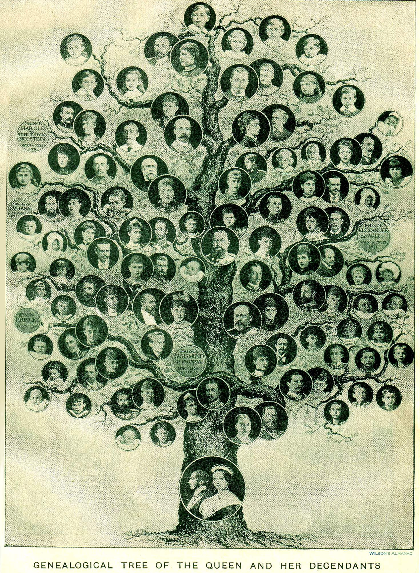 genealogy and family history: