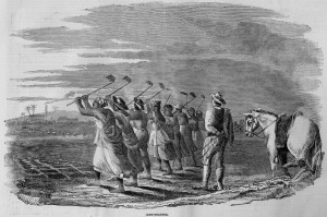 Cane Holeing in Jamaica